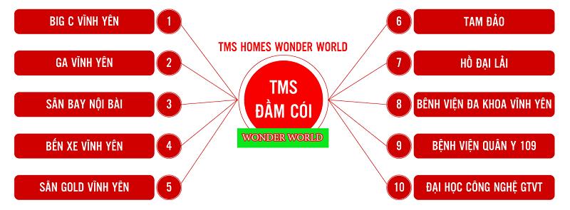 Kết nối Dự án Khu đô thị TMS Homes Wonder World Vĩnh Yên