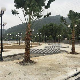 Tiến độ Dự án Khu đô thị Thanh Sơn Riverside Garden Phú Thọ